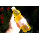Cedar nut oil, 525 ml, plastic bottle
