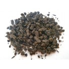 Granulated Ivan-Chai / spicies