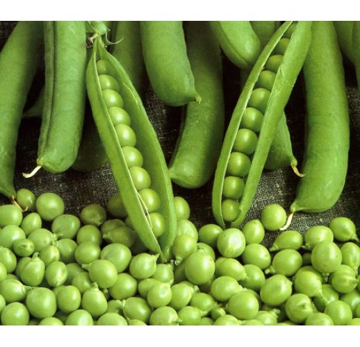 Sugar pea (raw food)