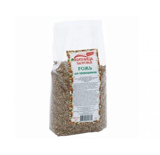 Rye for germination, 500 g
