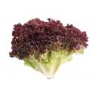 Salad red