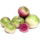 Turnip white-pink