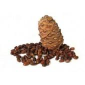 Cedar nuts (12)
