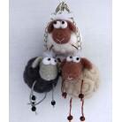 Cutie sheep