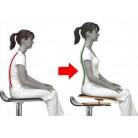 Spine-Ok seat