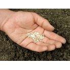 Grow Easy Seeds starter kit